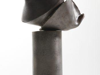 trophée éclosion par Alain Vuillemet