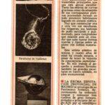 cisneros-n22-1981 Le sculpteur Alain Vuillemet expose galerie Novart à Madrid