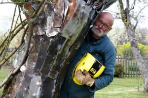 exosquelette sculpture sauvetage d'un pommier